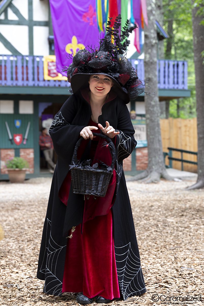 King Richard's Faire 2018